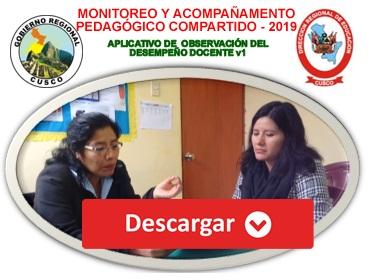 MONITOREO Y ACOMPAÑAMENTO PEDAGÓGICO COMPARTIDO - 2019